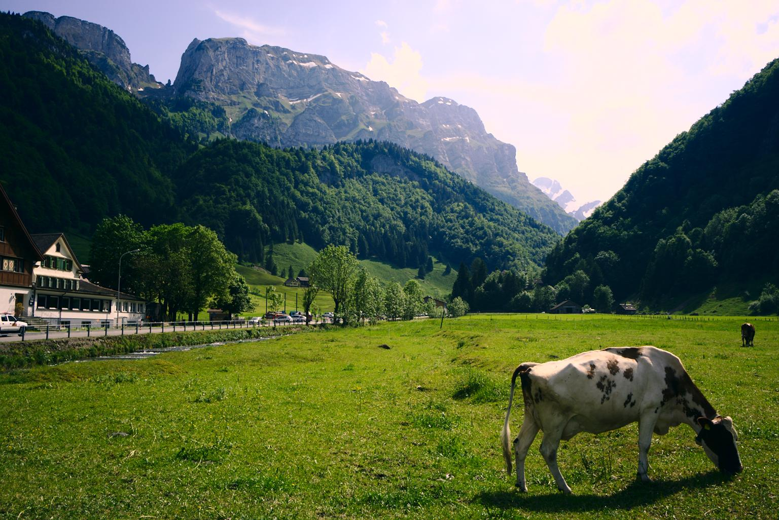 {filename}/img/appenzell-2.jpg